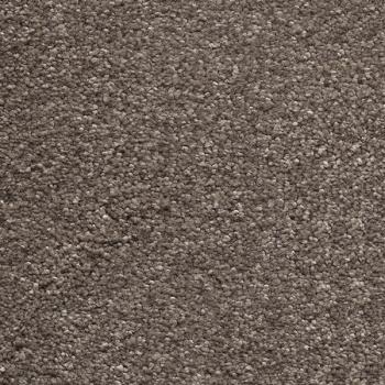 Teppichboden kaufen  Teppichboden-Online-Shop - AW Sirius 37 / Teppichboden Velours ...